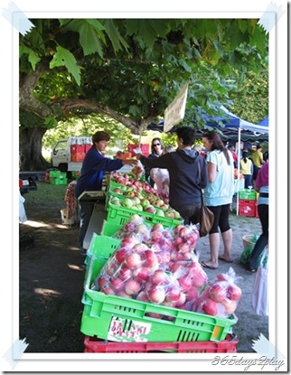 Hawkes Bay Apple Seller at Farmers Market