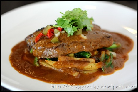 Black Earth - Sirloin Steak