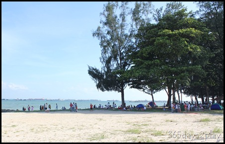 East Coast Park Trees