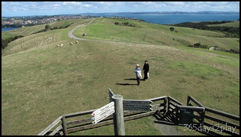 Shakespear Park - Views from the peak (5)