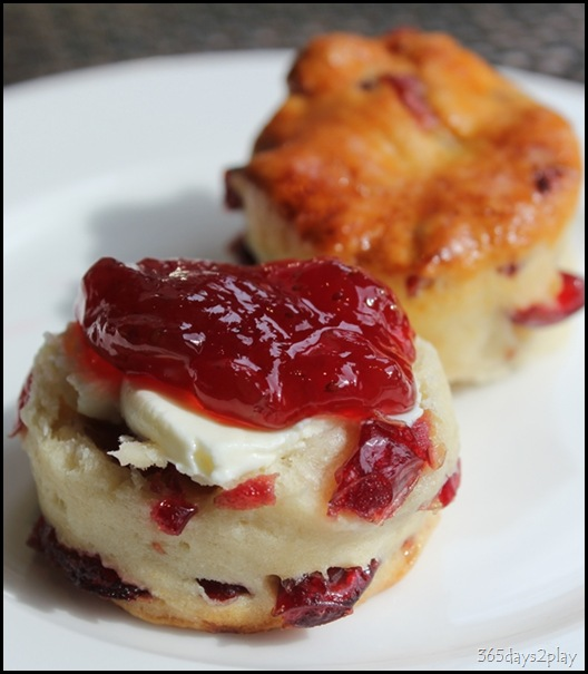The Knolls - Scone with clotted cream and jam